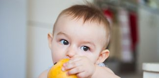 give mango to infant