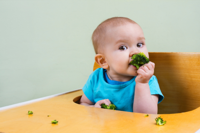 Health Benefits of Broccoli for Babies