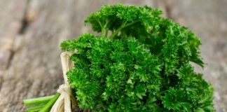 health benefits of parsley for babies