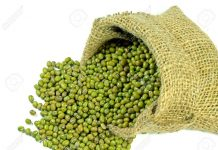 can mung bean be given to babies