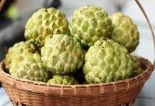 benefits of custard apple for babies