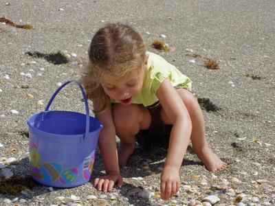 Kids collecting seashells