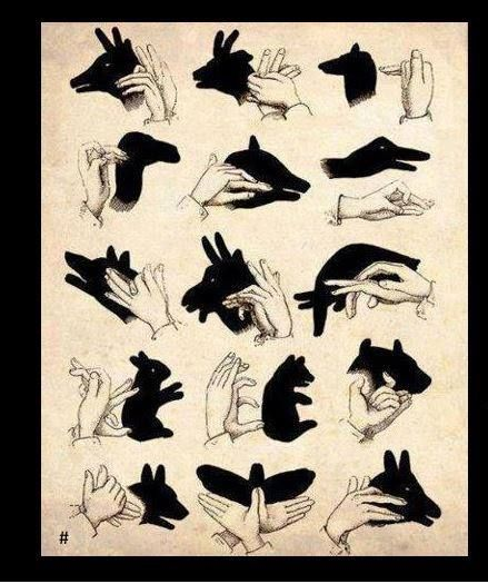 Shadow puppets with hands