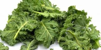 benefits of kale for toddlers