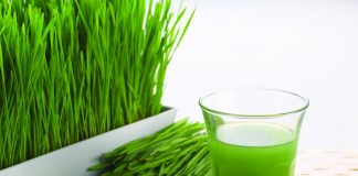 benefits of drinking wheatgrass juice