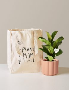 plants for mom