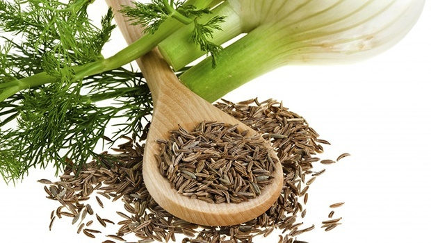 Fennel Grass and Seeds