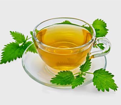 Nettle Herbal Tea