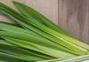 health benefits of lemongrass