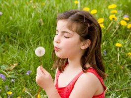 dandelion benefits for infants