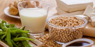 Vegetarian Protein Sources for Children