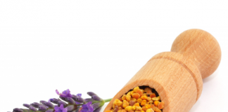 bee pollen for babies