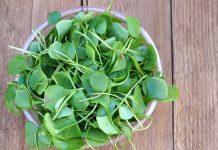 Health Benefits of Watercress for Children