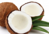 coconut allergy in kids