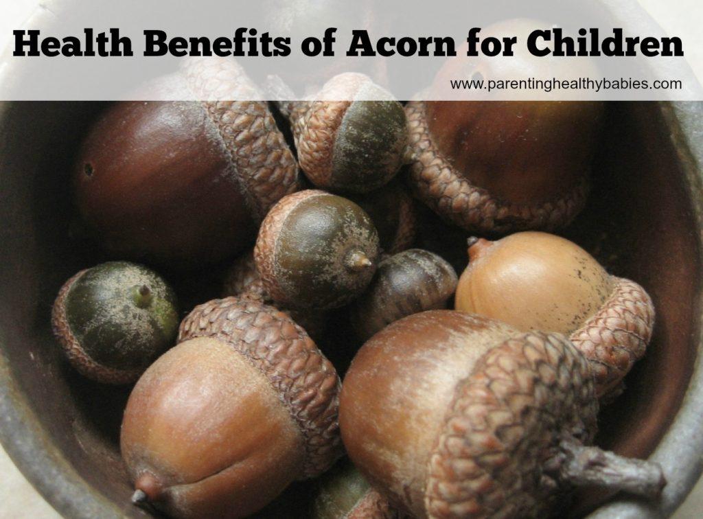 Health Benefits of Acorn for Kids
