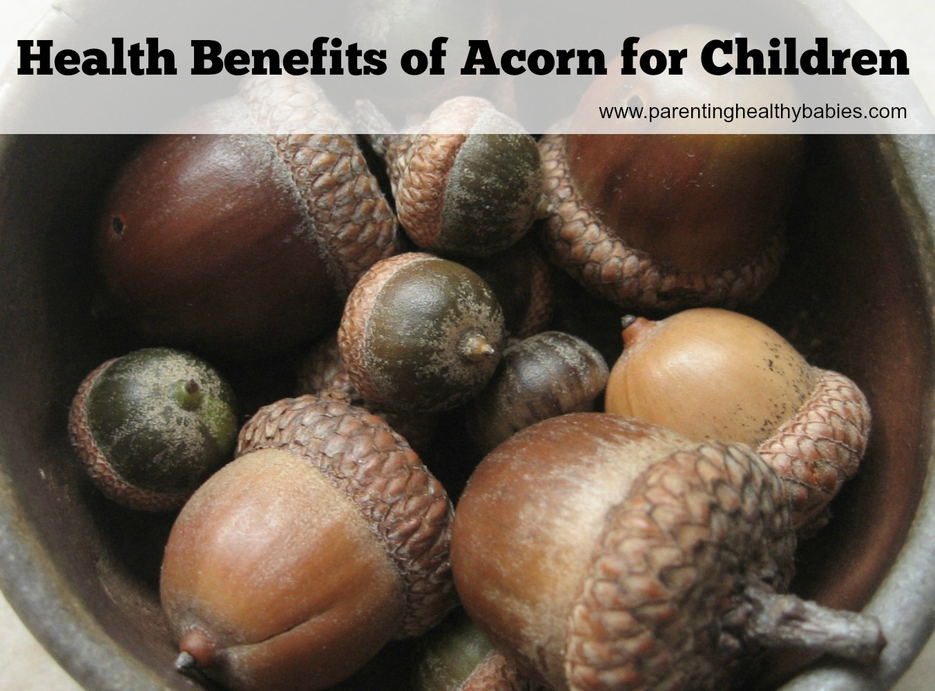 Health Benefits of Acorn for Kids