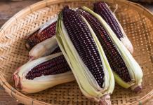 Blue corn super food