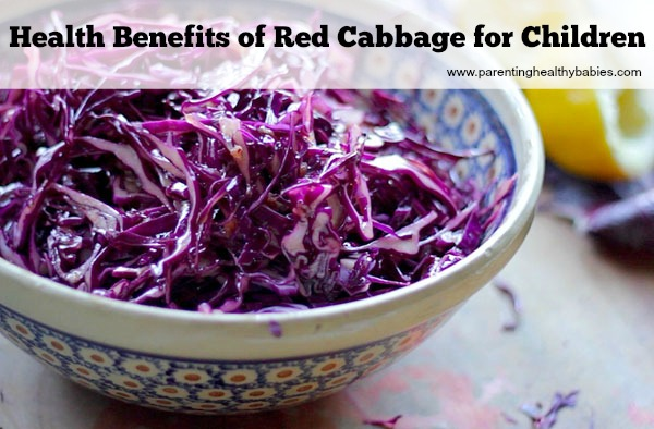 Health Benefits of Red Cabbage for Kids