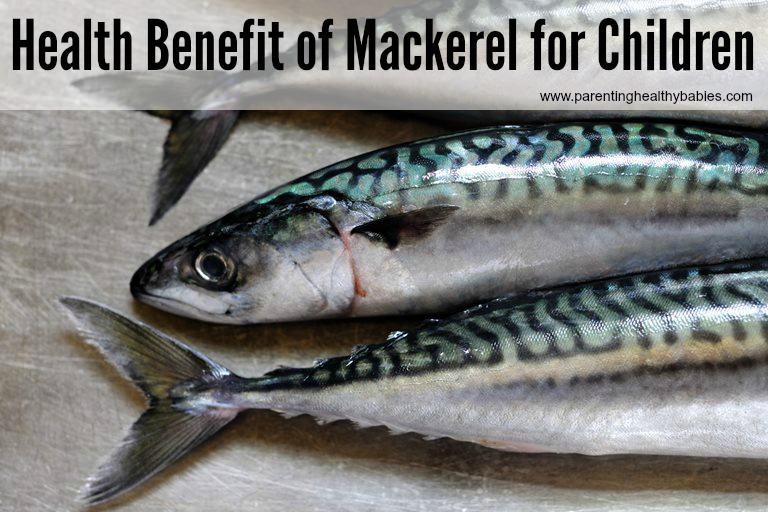 Health Benefit of Mackerel for Kids