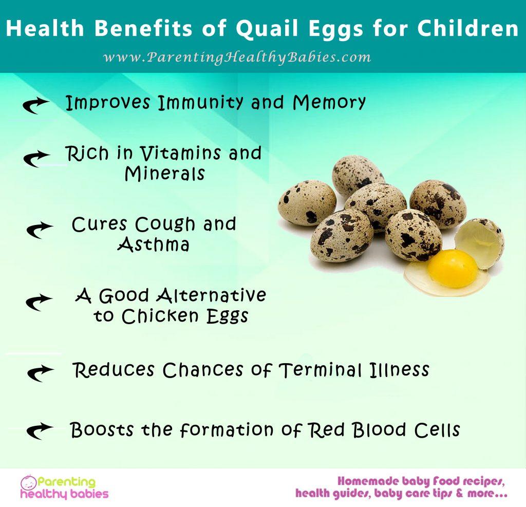 quail eggs for children