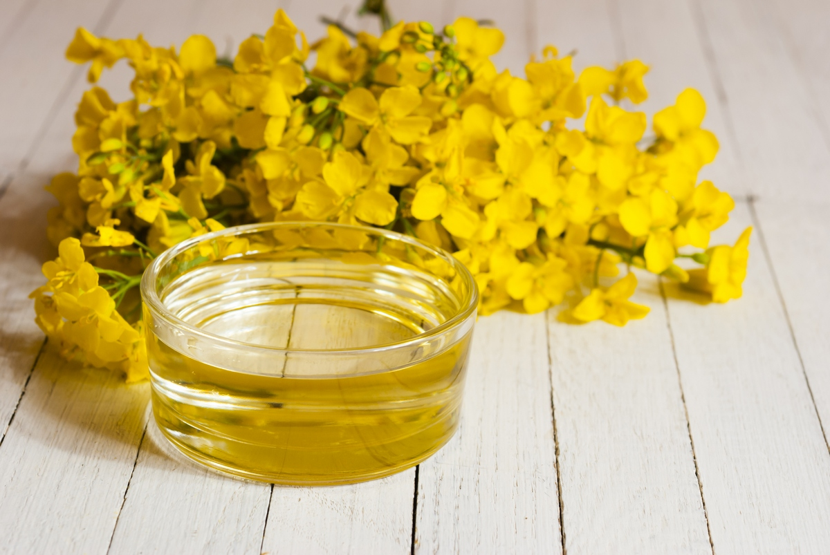 7 Health Benefits of Rapeseed Oil for Children