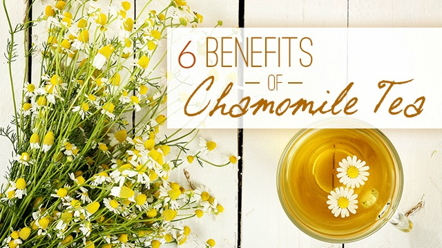 Is Chamomile Tea good for my child ?