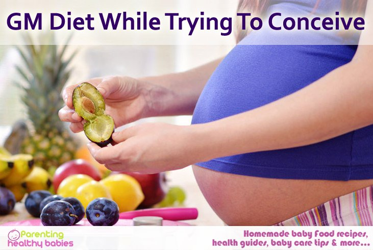 how to lose weight while trying to conceive, GM diet before getting pregnant, Effects of GM diet, Dieting before pregnancy