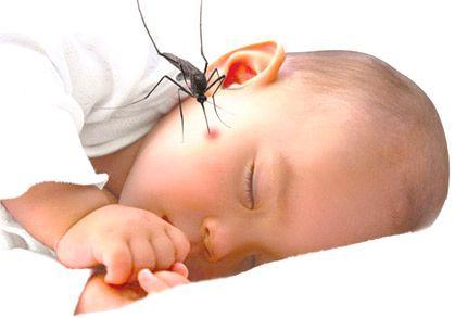 Mosquito Bites In Babies