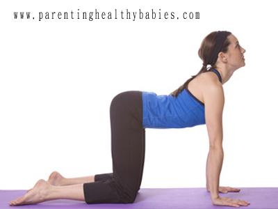 prenatal Bitilasana yoga pose
