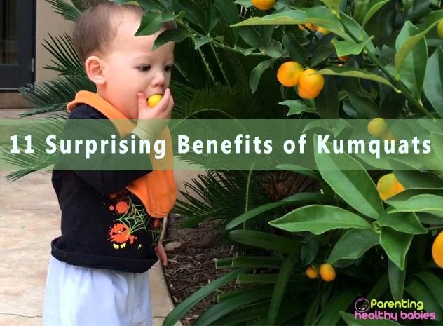 kumquats fruit