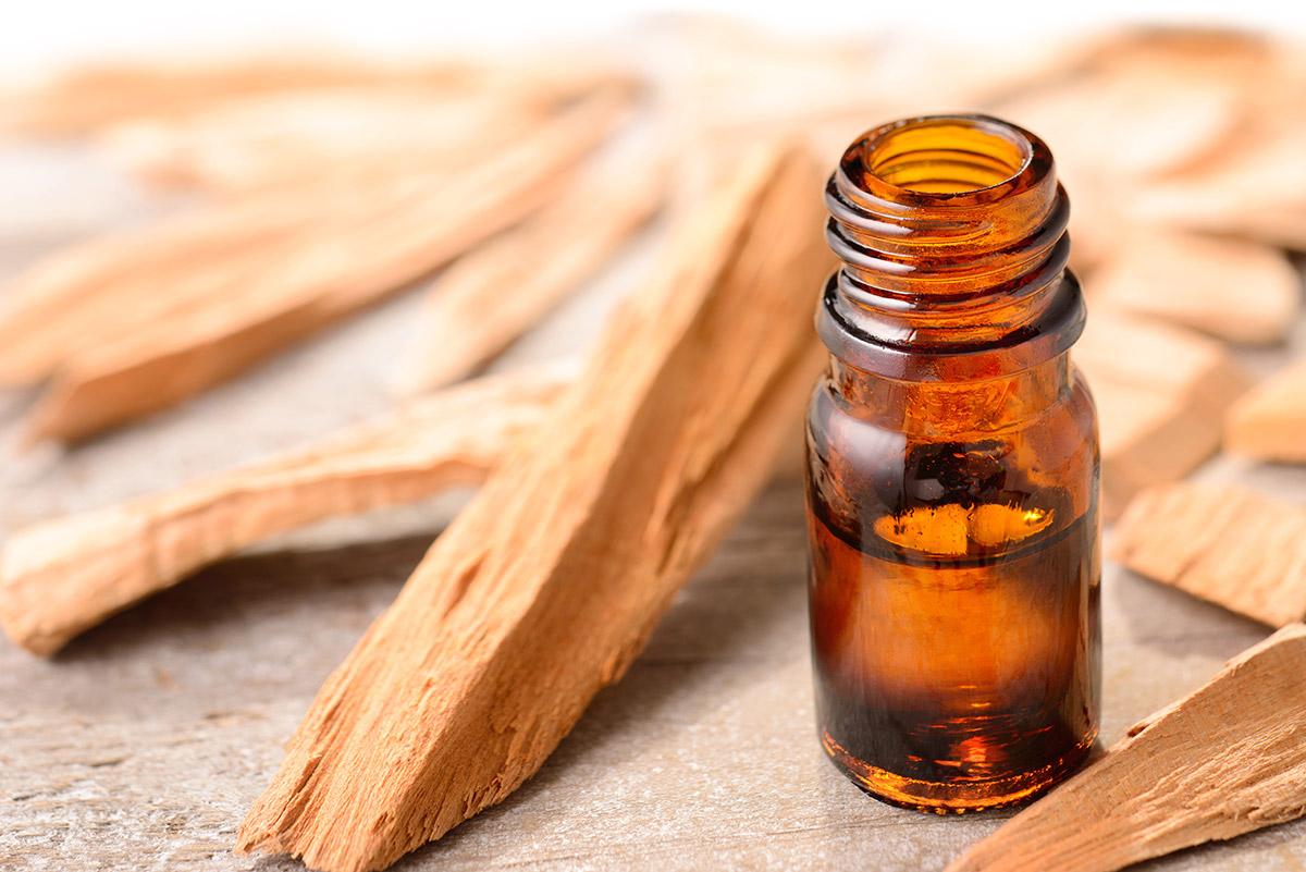 sandalwood-oil-benefit -kids