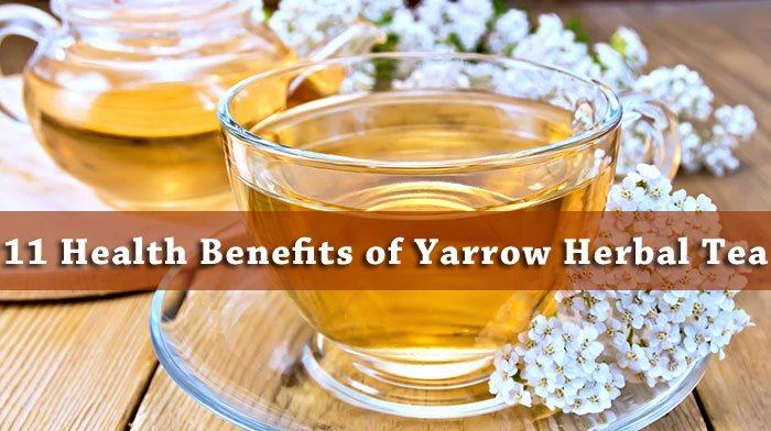 yarrow tea benefits