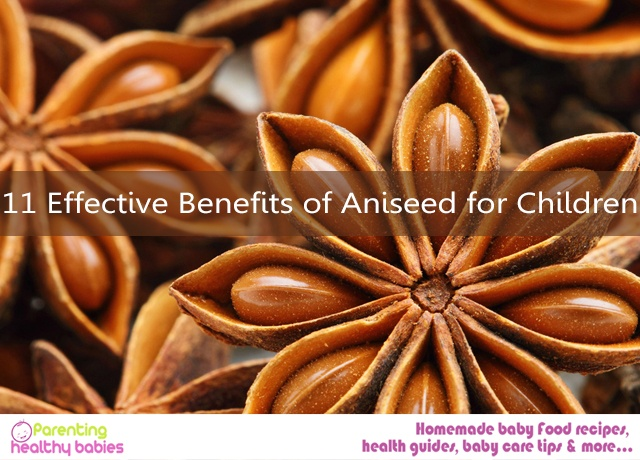 Aniseed for Children
