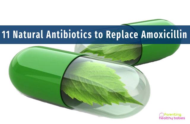 11 natural antibiotics to replace amoxicillin