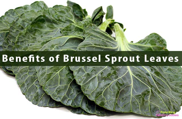 Benefits of Brussel Sprout Leaves