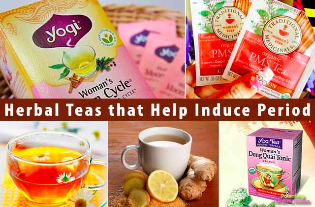 5 Herbal Teas that Help Induce Period