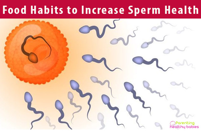 Food Habits to Increase Sperm Health