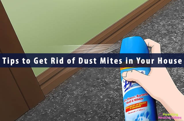 Tips to Get Rid of Dust Mites in Your House