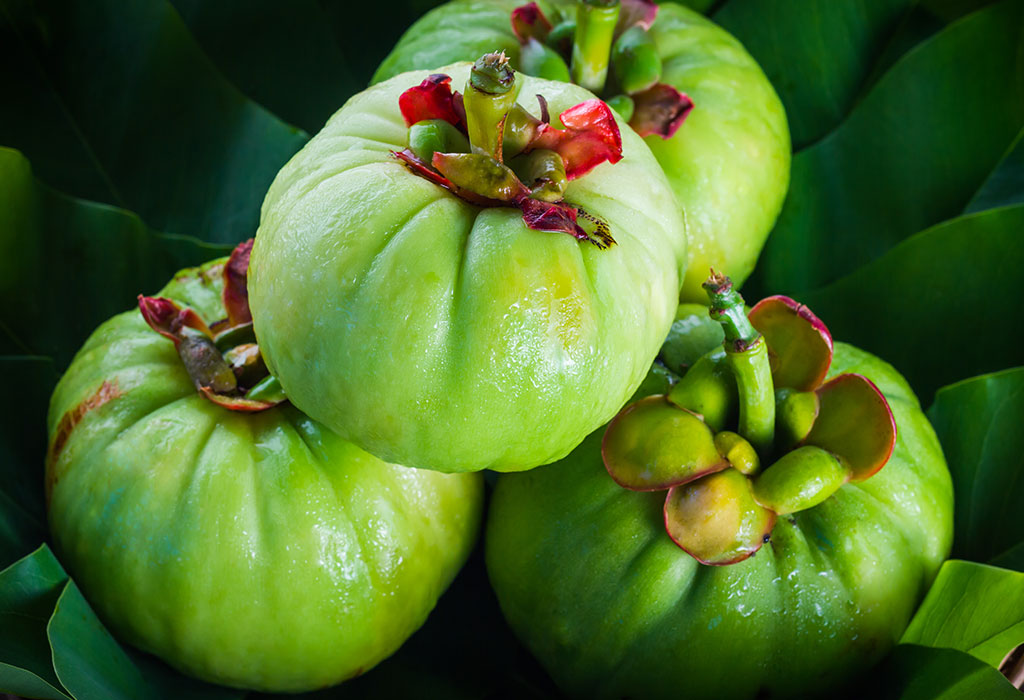 garcinia cambogia during breastfeeding