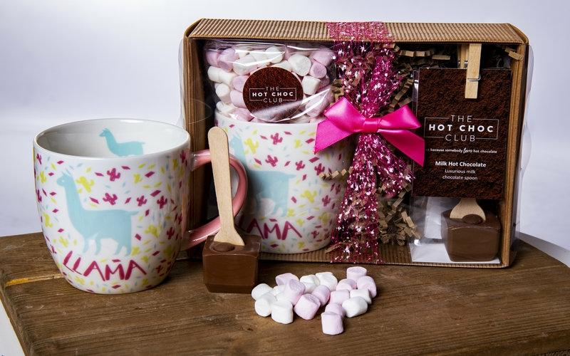 A Gift Collection of Marshmallows and Hot Chocolate Mixes