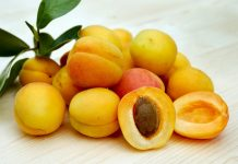 mirabelle plum benefits