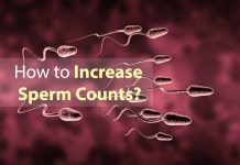 increase the sperm count