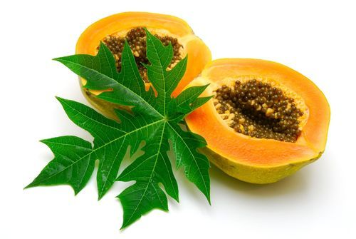 health benefits of papaya leaf