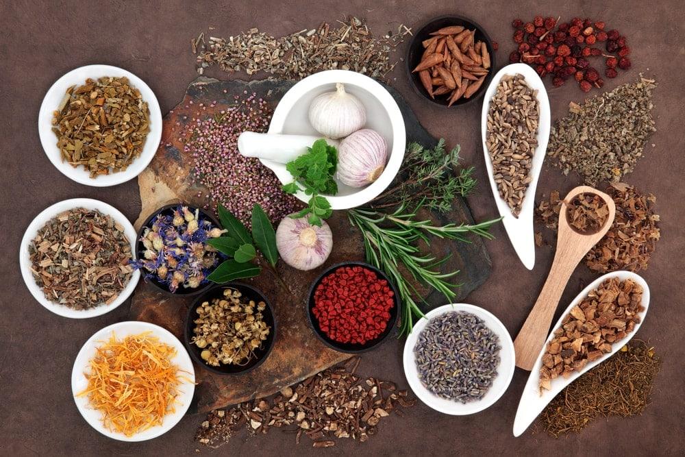 fertility herbs